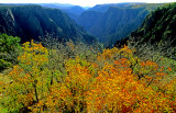 Black Canyon, Black Canyon of the Gunnison National Monument, CO