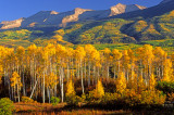 East Beckwith Mountains near Kebler Pass, CO