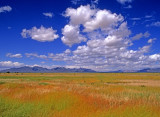 Ford Dry Lake, CA