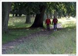 Hiking in Deer Park
