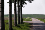 Vierhuizen - Midhalmerweg