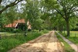 Noordlaren - Noordlaarderbos