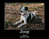Joop memorial 2006