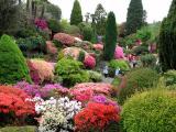 Leonardslee Gardens in May