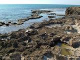 Habonim sea shore