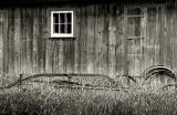 Behind the Shed
