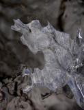 ice 229 w