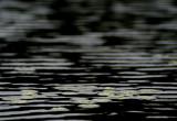 pond patterns 092