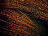 river hair 272