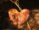 a worn old heart for donna 636