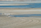 winter shore 447