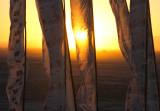 20100828_Burning_Man_2010_DHF_12849.jpg