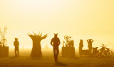20110826_Burning_Man_2011_sDHF_3184.jpg