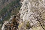a cliff climber