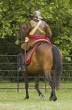 cavalry 3.jpg