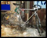1694 Fastfrusen cykel 1.jpg
