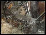 1694 Fastfrusen cykel 2.jpg