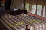 Finch Hattons Camp, Tsavo West, Kenya