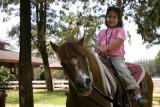 Chokchai Pony 2007
