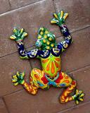 Our Garden Frog