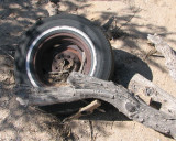 old Tire and Rim
