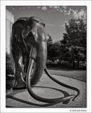 Mammoth, Fair Park, Dallas