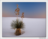 White Sands National Monument, Oct 2010