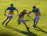wexford-offally-game