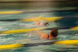 1-8-2011 - Swimmersds20110108-0339.jpg