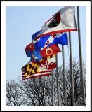 ds20060331_0045awF Rockville Flags.jpg