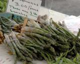 ds20060604_0163a1w Asparagus.jpg