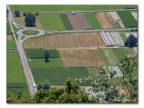 Verkehr und Landwirtschaft / traffic and agriculture (7367)