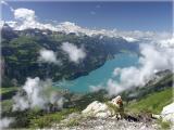 Brienzersee / Lake of Brienz