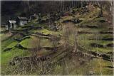 Valle Maggia (TI)