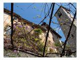 Kirche S. Vigilio - Gandria (TI)