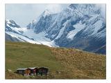 Lötschenlücke (3173 m) mit Sattelhorn
