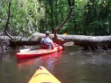 kayaking_adventures
