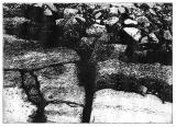 Photogravure. Image from Greenland.