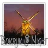Bokrijk @ night