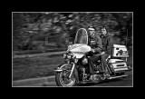 Harley Couple III