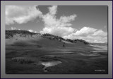 Yellowstone in Monochrome