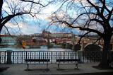 on the bank of Vltava