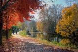 Canal path in Lambertville