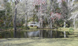 Charleston South Carolina - March