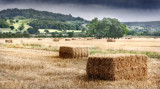 Two haybales and others