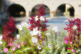 Flower Tones