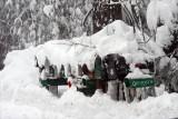 Snow photos, Magalia to Stirling City, CA - Feb. 14, 2009