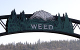 Welcome to Weed
