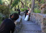 Photographing the happy couple
