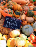 Assorted gourds for sale